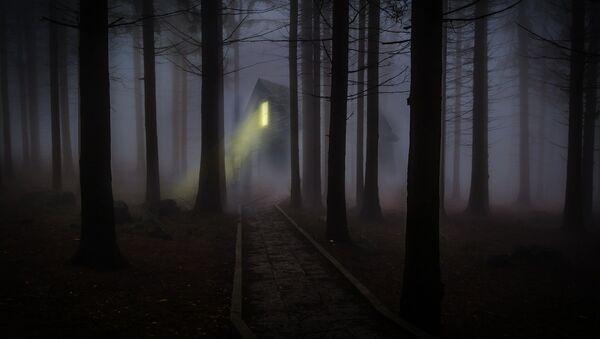 Дом у цёмным лесе - Sputnik Беларусь