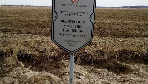Знак на мяжы поля - Sputnik Беларусь