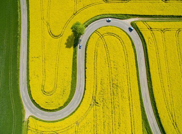 Проселочная дорога идет мимо полей рапса недалеко от Ниенштедта, центральная Германия. - Sputnik Беларусь