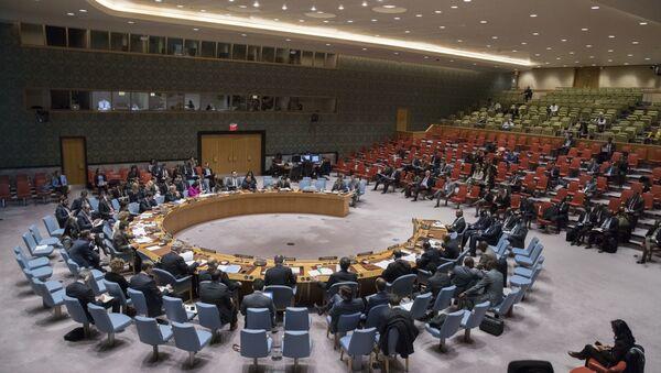 Совет Безопасности ООН, архивное фото - Sputnik Беларусь