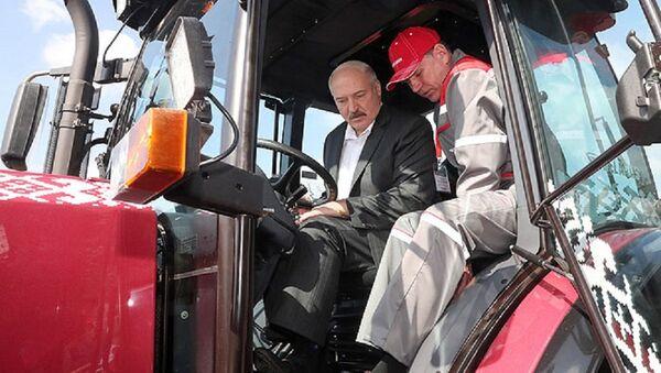 Президент Беларуси Александр Лукашенко за рулем трактора - Sputnik Беларусь