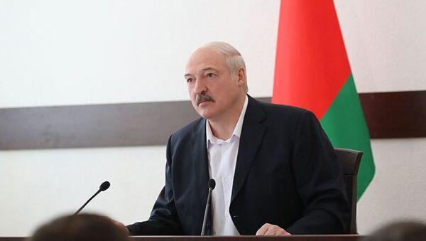 Александр Лукашенко на совещании с руководством Житковичского райисполкома и предприятий района - Sputnik Беларусь