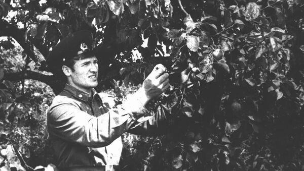 Аляксандр Лукашэнка падчас службы ў Брэсце ў складзе памежных войскаў КДБ СССР у 1975-1977 гадах - Sputnik Беларусь