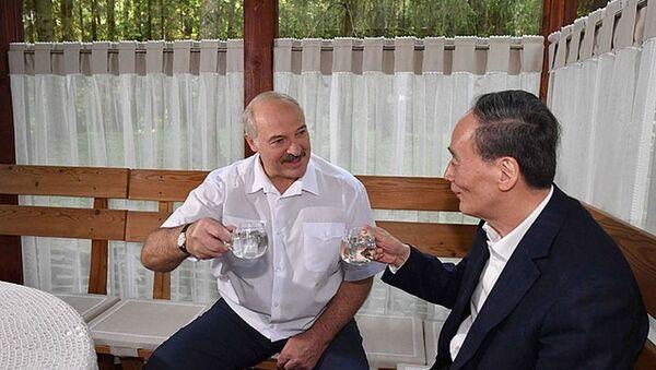 Александр Лукашенко и Ван Цишань в резиденции белорусского лидера - Sputnik Беларусь