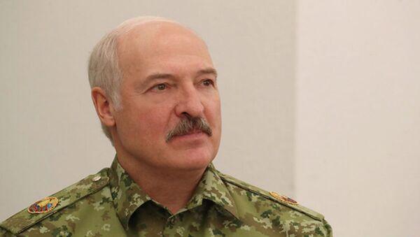 Лукашенко посетил погранзаставу Дивин в Кобринском районе - Sputnik Беларусь