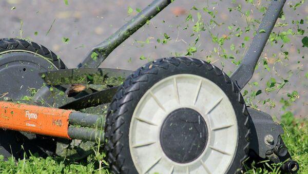 Пакос травы, архіўнае фота - Sputnik Беларусь