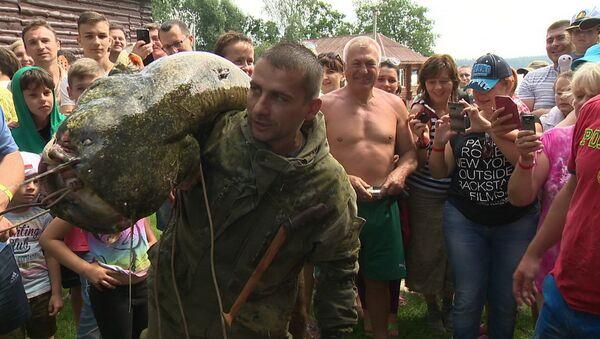 Бобруйчанин Николай Шепетов и его улов - сом весом 42,5 кг - Sputnik Беларусь
