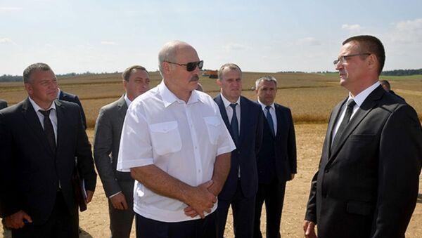 Рабочая поездка Александра Лукашенко в Минский район - Sputnik Беларусь