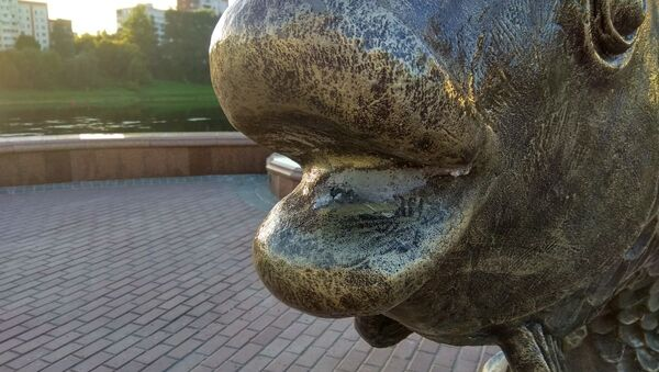 Скульптура Золотой рыбки в Витебске осталась без ключика - Sputnik Беларусь