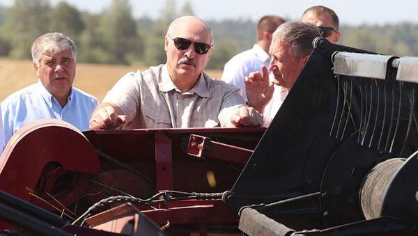 Президент Беларуси Александр Лукашенко в Могилевской области - Sputnik Беларусь