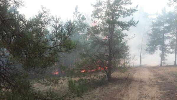 Пажар на Альманскіх балотах - Sputnik Беларусь