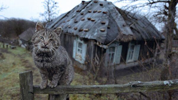 Стары дом у вёсцы - Sputnik Беларусь