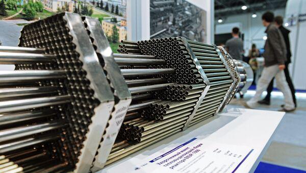 Укороченный макет тепловыделяющей сборки реактора ВВЭР-1000 - Sputnik Беларусь