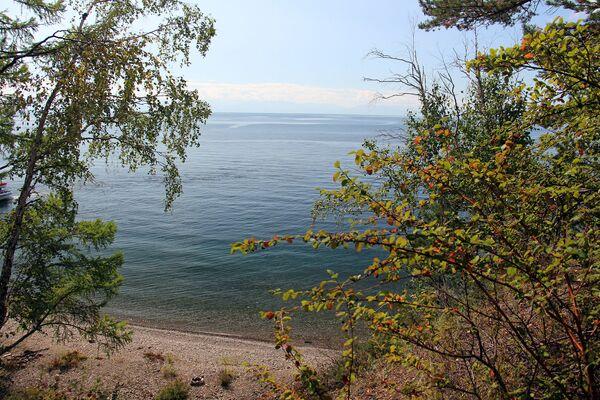 Каменистые пляжи Байкала подчеркивают прозрачность воды. - Sputnik Беларусь