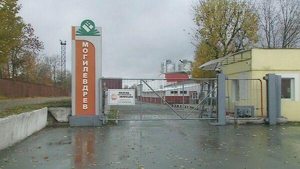 Взрыв прогремел на предприятии Могилевдрев - Sputnik Беларусь