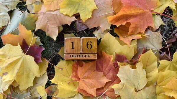 Календарь 16 октября - Sputnik Беларусь