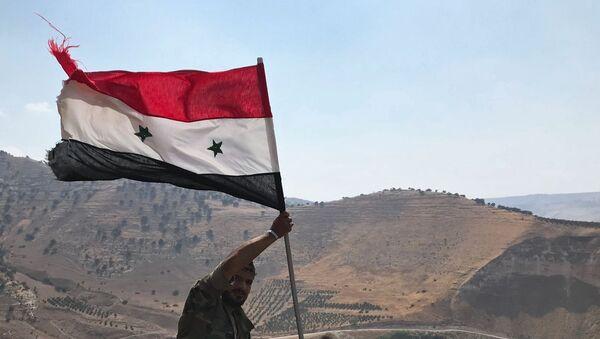 Сирийская армия освободила от террористов  провинцию Дераа - Sputnik Беларусь