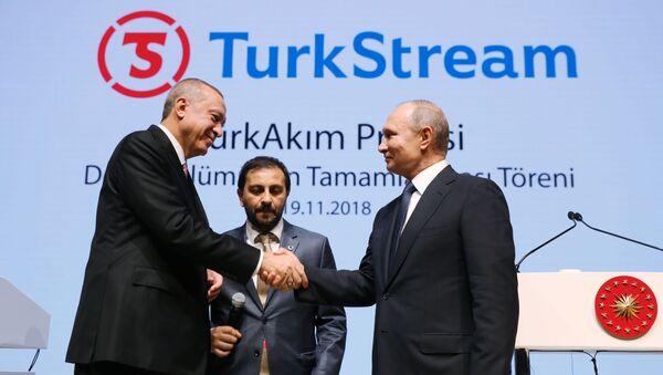 Владимир Путин и Реджеп Тайип Эрдоган принимают участие в церемонии завершения строительства морского участка газопровода Турецкий поток. - Sputnik Беларусь