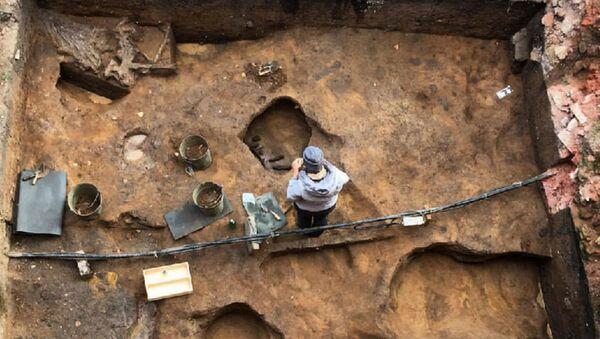 Чэрап маманта са скарбам унутры знайшлі археолагі ў Падмаскоўі - Sputnik Беларусь