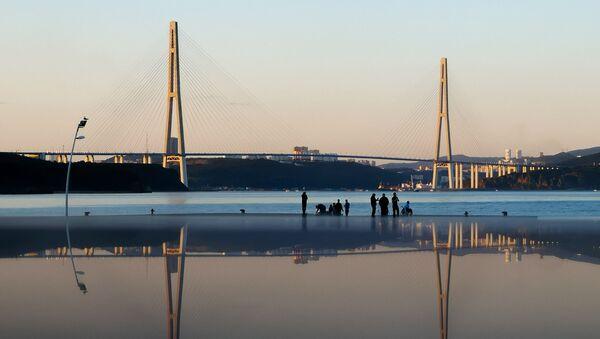 Вантовый мост (Русский мост) и бухта Аякс во Владивостоке - Sputnik Беларусь