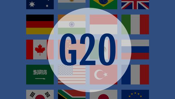 Большая двадцатка в цифрах – инфографика на sputnik.by - Sputnik Беларусь
