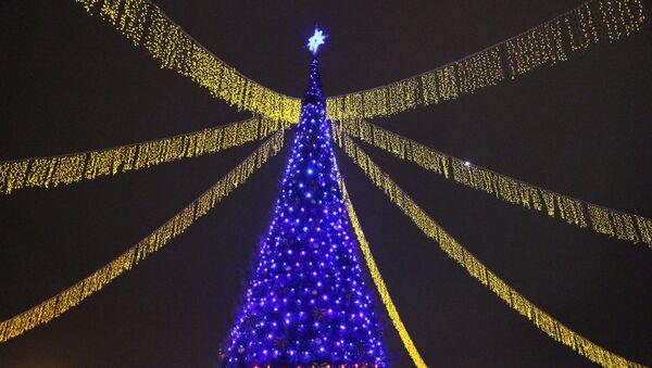 Главная елка Гродно на площади Ленина - Sputnik Беларусь