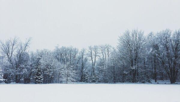 Ветрана і снежна: якое будзе надвор'е ў Беларусi 26 снежня - Sputnik Беларусь