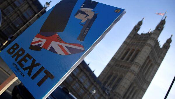Выступления против Brexit в Лондоне - Sputnik Беларусь