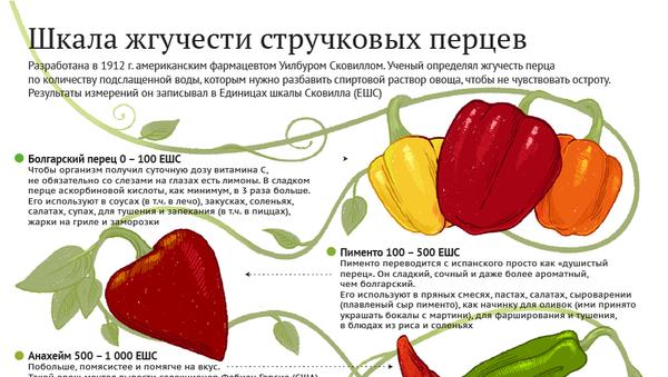Шкала жгучести перцев - инфографика - Sputnik Беларусь