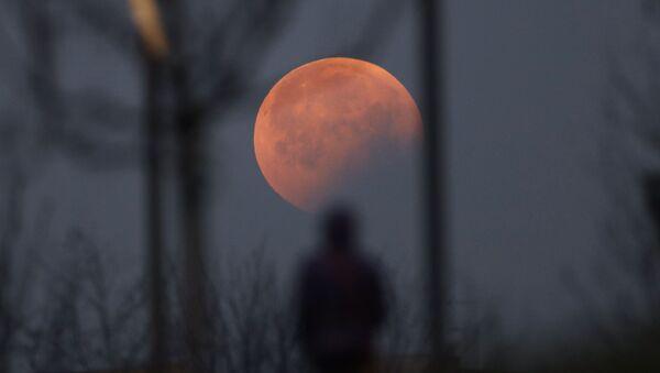 Это затмение стало первым лунным затмением в 2019 году - Sputnik Беларусь
