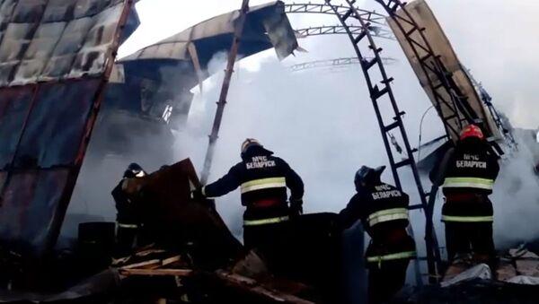 Пожар пилорамы в Рогачеве - Sputnik Беларусь
