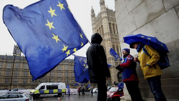 Сторонники Brexit возле парламента в Лондоне - Sputnik Беларусь