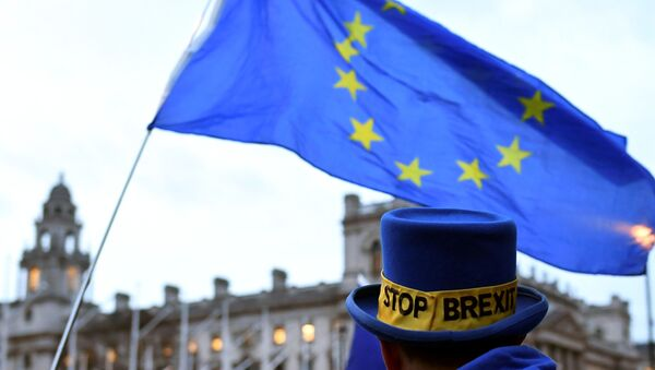 Противник Brexit с флагом Евросоюза в Лондоне - Sputnik Беларусь