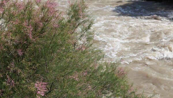 Река в Иране, архивное фото - Sputnik Беларусь