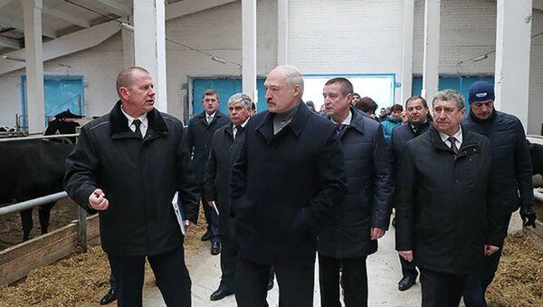 Александр Лукашенко посещает молочно-товарный комплекс Слижи в Шкловском районе - Sputnik Беларусь