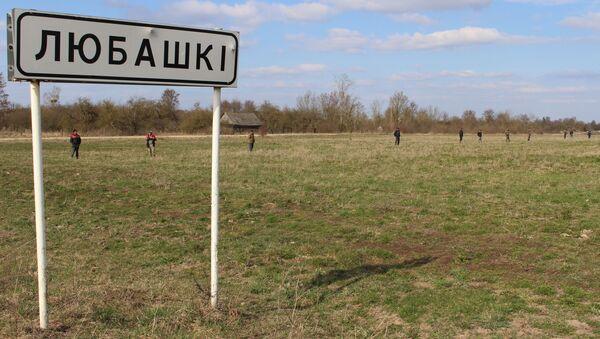 Люди осматривают буквально каждый метр, но пока никаких результатов нет - Sputnik Беларусь