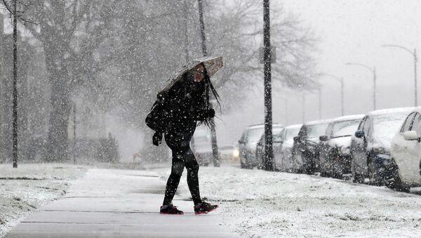 Снег в Иллинойсе - Sputnik Беларусь