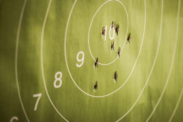 Мишень после демонстрации возможностей пистолета Удав на стрельбище - Sputnik Беларусь