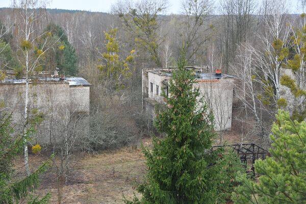Экскурсия в зону отчуждения ЧАЭС - Sputnik Беларусь