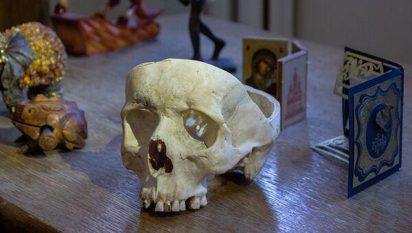 В кабинете судмедэксперта череп - это не муляж - Sputnik Беларусь