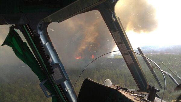 Лесной пожар в Беларуси - Sputnik Беларусь
