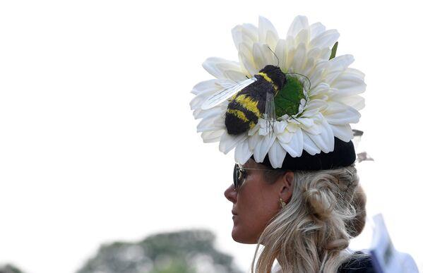 Цветочное шоу в Челси - Sputnik Беларусь