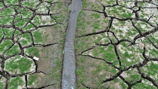 Иссохшая земля у водохранилища Лос-Лорелес в Тегусигальпе в апреле 2019 года - Sputnik Беларусь