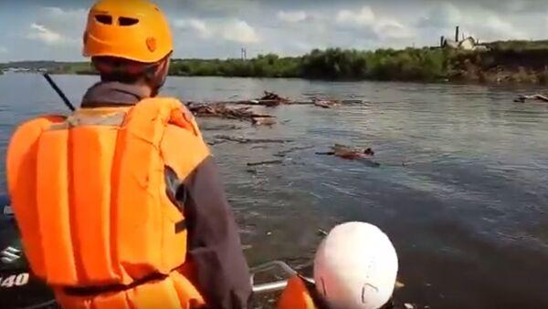 Сачком ее цепляй: как МЧС спасало кошек из воды в Тулуне - Sputnik Беларусь