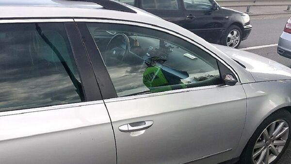 Автомобиль водителя, сбившего пешехода под Слонимом - Sputnik Беларусь