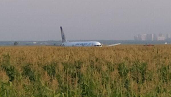Пассажирский самолет совершил жесткую посадку в Подмосковье  - Sputnik Беларусь