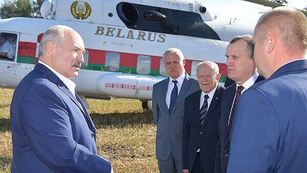 Лукашенко пообещал жестокие разборки за падеж скота - Sputnik Беларусь