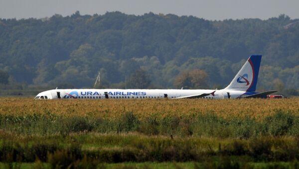 Пассажирский самолёт совершил аварийную посадку в Подмосковье - Sputnik Беларусь