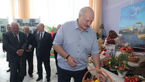 Аляксандр Лукашэнка наведаў Іўе - Sputnik Беларусь