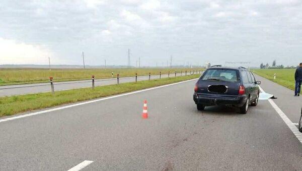 Ночью на трассе Минск-Гомель Ford насмерть сбил пешехода - Sputnik Беларусь